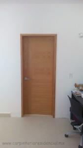 carpintero puerta san luis potosi