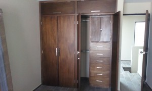 closet carpinteria san luis potosi